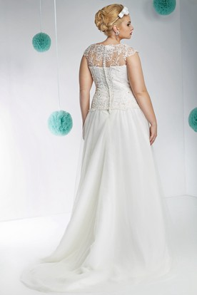 V-Neck Maxi Sleeveless Appliqued Lace&Tulle Plus Size Wedding Dress