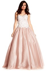 A-Line Long Strapless Appliqued Sleeveless Tulle Prom Dress With Backless Style