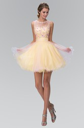 Muti-Color A-Line Mini Jewel-Neck Sleeveless Tulle Dress With Appliques And Appliques