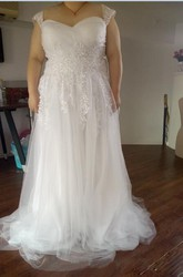 A Line Queen Anne Lace Tulle Zipper Wedding Gown