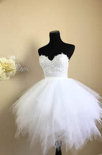 Short Lace Bodice Dress With Tulle Skirt
