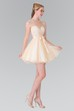 A-Line Short Scoop-Neck Sleeveless Tulle Satin Deep-V Back Dress With Bow