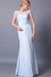 Radiant Cap-sleeved Bateau Neck Lace Gown With Deep V-back